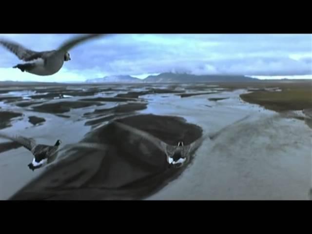 Il popolo migratore - Trailer