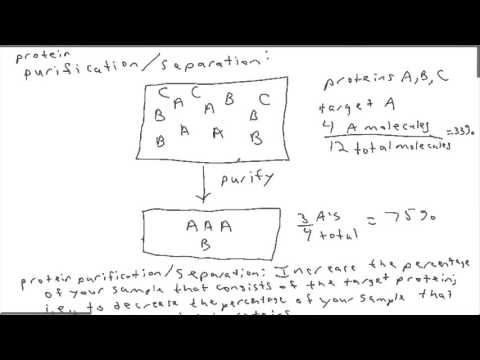 Biochemistry: Protein separation and purification