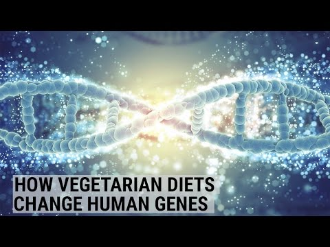 Surprising ways that a vegetarian diet is changing human gen