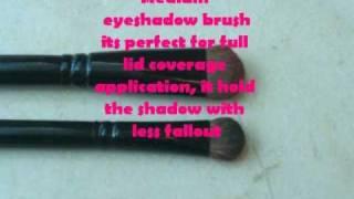 Coastal Scents Eyeshadow Brush Review Thumbnail