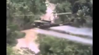 david n casualties of war in vietnam