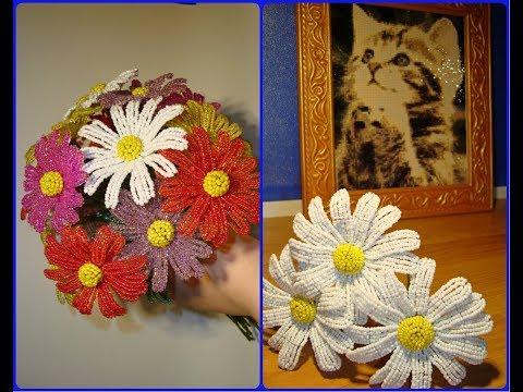 Вопрос: Как называются цветы похожие на ромашки, только большие и разноцветные?