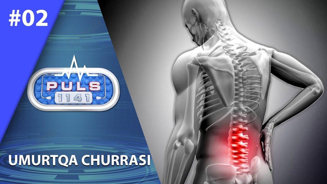 Puls 1141 2-son Umurtqa churrasi (03.07.2019)