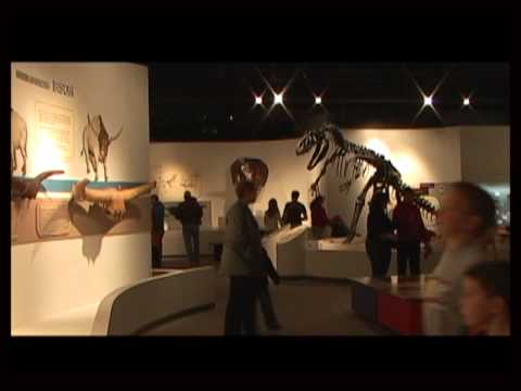 Amarillo, Texas - Museums