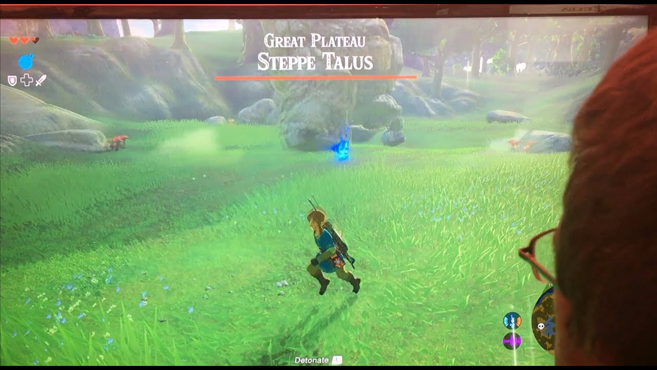 Female Link won't be making an appearance in Breath of the Wild.