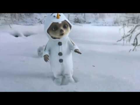Compare The Meerkat Advert (Oleg's Magical Dream )