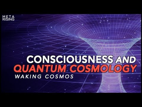 Documentary about Consciousness and Reality | The Self-Excited Circuit | Waking Cosmos - Episode one