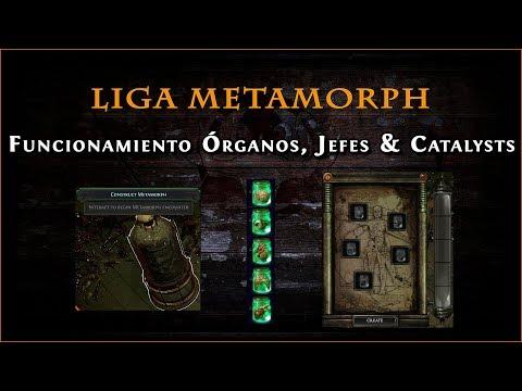 Guía Path Of Exile 3.9 || Funcionamiento Metamorph Con Tane Octavius (Liga Metamorph)