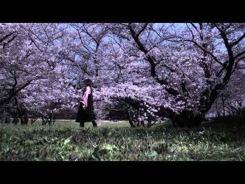 ビデオサロン2015年5月号連載「LONESOME VIDEOの流儀」(ふるいちやすし氏)の関連動画「藤原夏姫×さくら×ふるいちやすし」。今回のテーマはスライ...