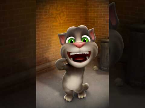 Talking tom sinning shimmer and shine theme song