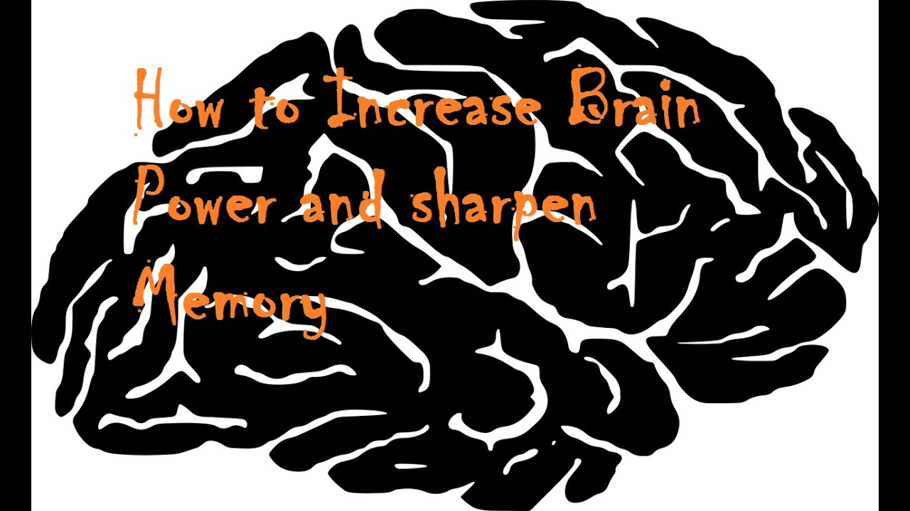 How to improve your memory and attention span image 4