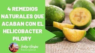 4 Remedios Naturales que acaban con el Helicobacter Pilory