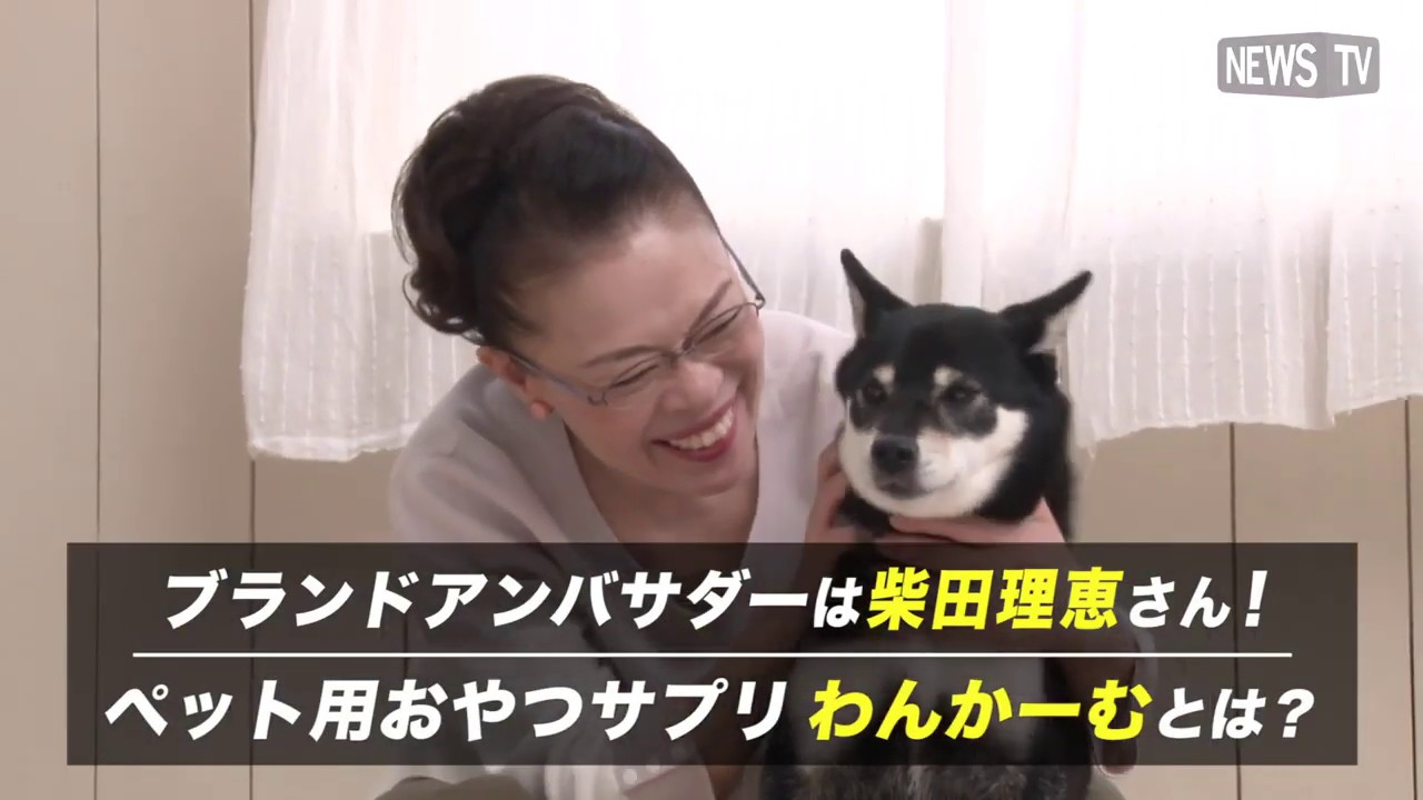 柴田 理恵 愛犬