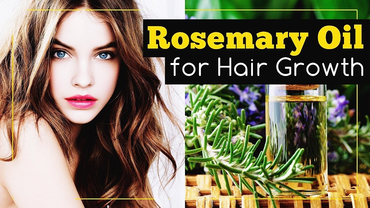 Download Rosemary Oil for Hair Growth: How to Use It?