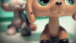 Littlest Pet Shop: The Runaway (Episode #2)