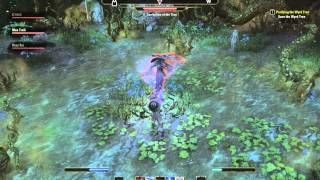 ESO Corruption of the Tree (Save the Wyrd Tree) How to