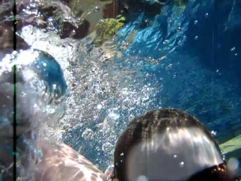 Malaysia Underwater fun!8