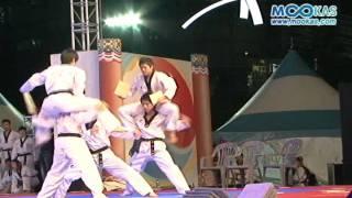 [영상뉴스] 이것이 태권도 시범이다! 국기원 시범단!!