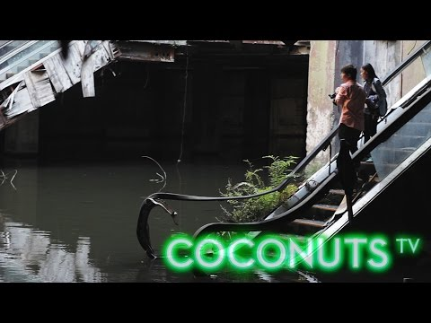 Farewell to Bangkok's abandoned New World mall aquarium