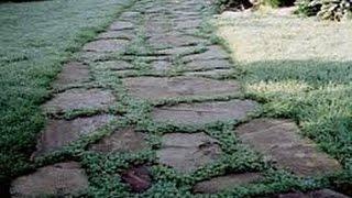 як зробити доріжку з натурального каменю