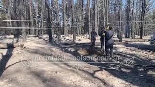 Incendio en Epuyen. Son más de 400 las hectáreas afectadas