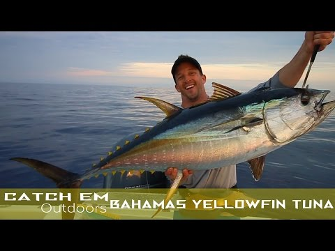 Bahamas Yellowfin Tuna Fishing HD