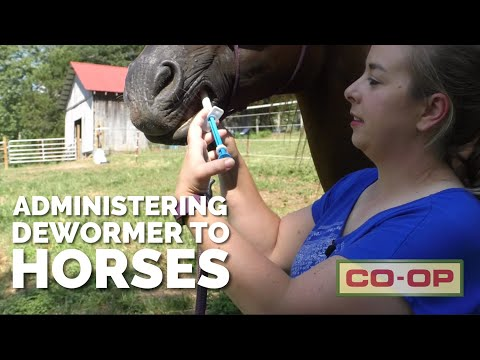 Co-op Minute: Deworming your Horse