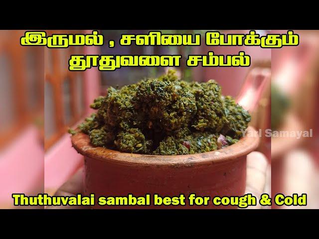 இருமல் , சளியை போக்கும் தூதுவளை சம்பல் | Thuthuvalai sambal best for cough & Cold | Natural medicine