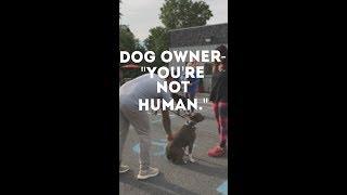 Dangerous Dogs