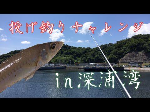 深浦湾で投げ釣りチャレンジ!
