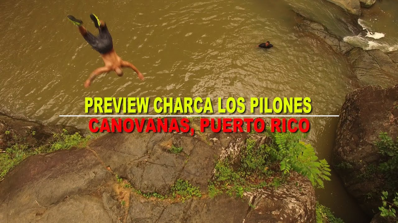 preview charca los pilones en canovanas - youtube