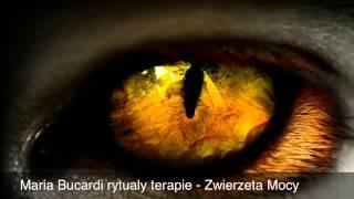 347.cz. II - Zwierzeta Mocy przewodnicy duchowi szamanizm wykład pogadanka - Maria Bucardi rytualy