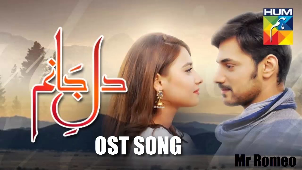 Dil e Janam OST Song | HUM tv Drama | 2017