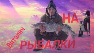 ВИТАЛИЧ НА РЫБАЛКЕ Ловим крупную щуку Зимняя рыбалка на щуку