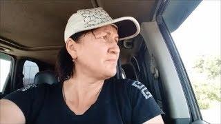 Я жду машины Топлана, чтобы забрать свою собаку Запись от 12 07 2019 г