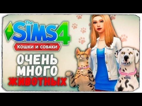 """100 ПИТОМЦЕВ - The Sims 4 """"Кошки и Собаки"""" ЧЕЛЛЕНДЖ"""
