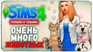 100 ПИТОМЦЕВ - The Sims 4