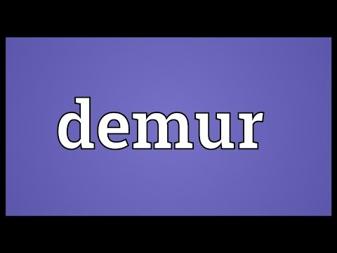 Demur Meaning