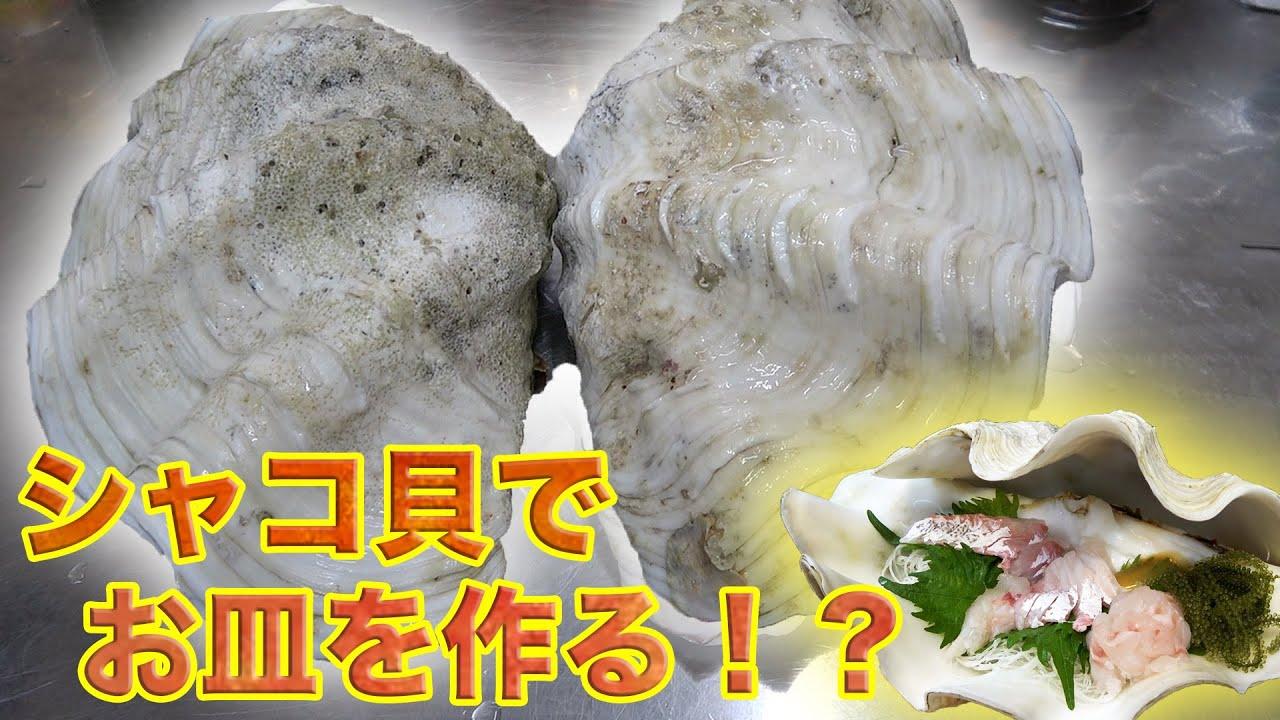 巨大シャコ貝の殻でお皿を作る