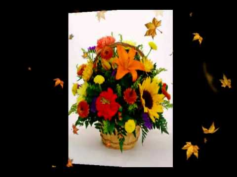 Thanksgiving Flowers by LaRosa's Flowers