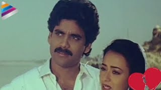 Nagarjuna loves Amala at the Taj Mahal | Love Scene Of The Day | Telugu Filmnagar