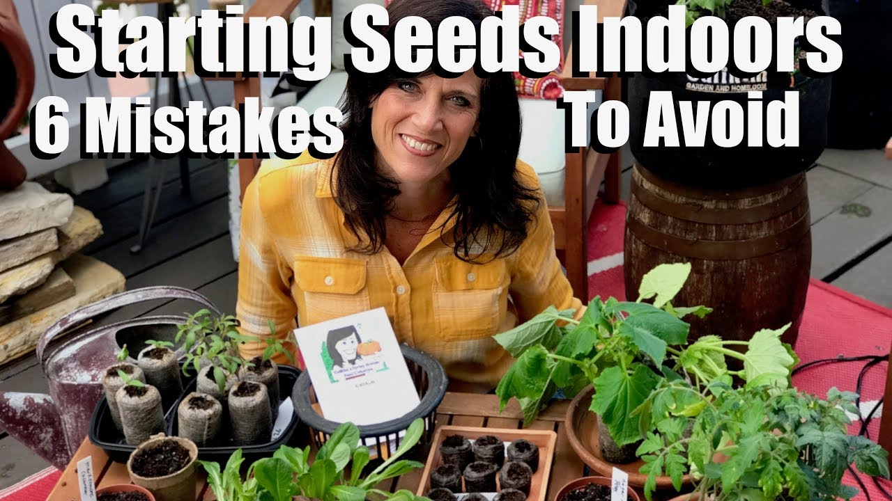 Plant Herb Seeds Your Self and Grow Your Own Herb Seedlings Indoor or Out with peat pods//pellets Herb Garden Seed Starter Kit