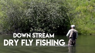 Dry Fly Fishing Down Stream | How To