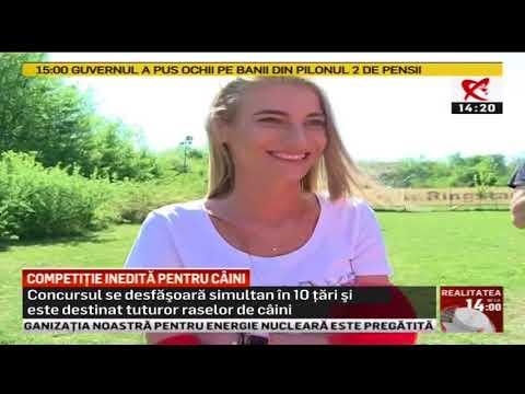 Competie Caini 2018 576i SDTV x264