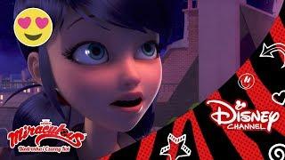 Kocha, nie kocha...   Miraculous: Biedronka i Czarny Kot   Oglądaj w Disney Channel!