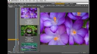 #Photoshop Workbench 457: Impressions of Topaz Impression