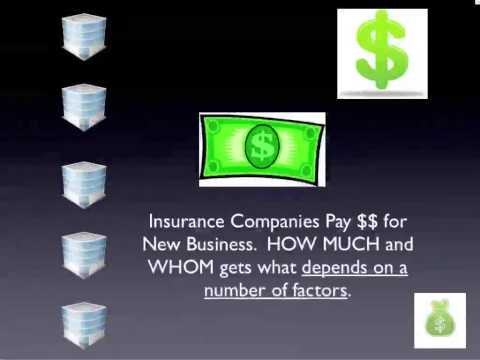 Insurance Hierarchy and Commissions