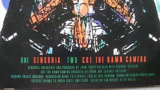 Cabaret Voltaire - Sensoria + Don't Argue (Razormaid Combi Mix by Art Maharg)