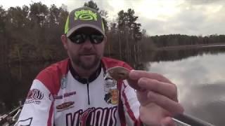 1-Minute Angler: Shallow Crankbait