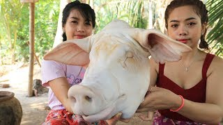 Yummy cooking Pig head belly recipe - Cooking skill